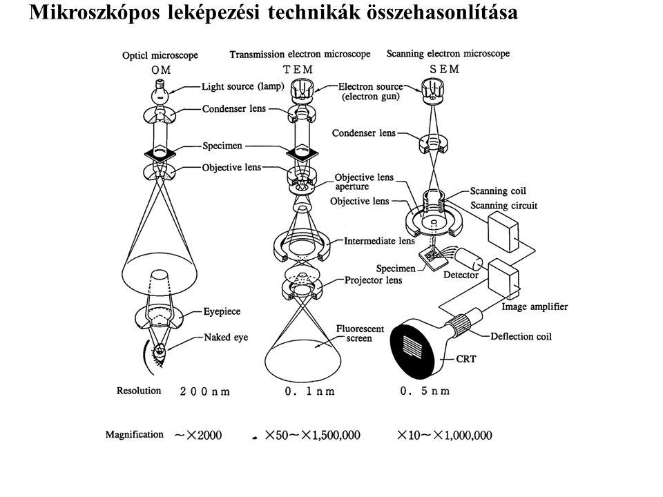 E = h· E = h· E = m·c 2 c = λ· c = λ· Az U feszültséggel gyorsított elektron kinetikus energiája: A c sebességű, m mozgási tömegű részecske hullámhossza: de Broglie ½ m·v 2 = e· U Az elektron hullámhossza: A 20 kV feszültséggel gyorsított elektron hullámhossza: