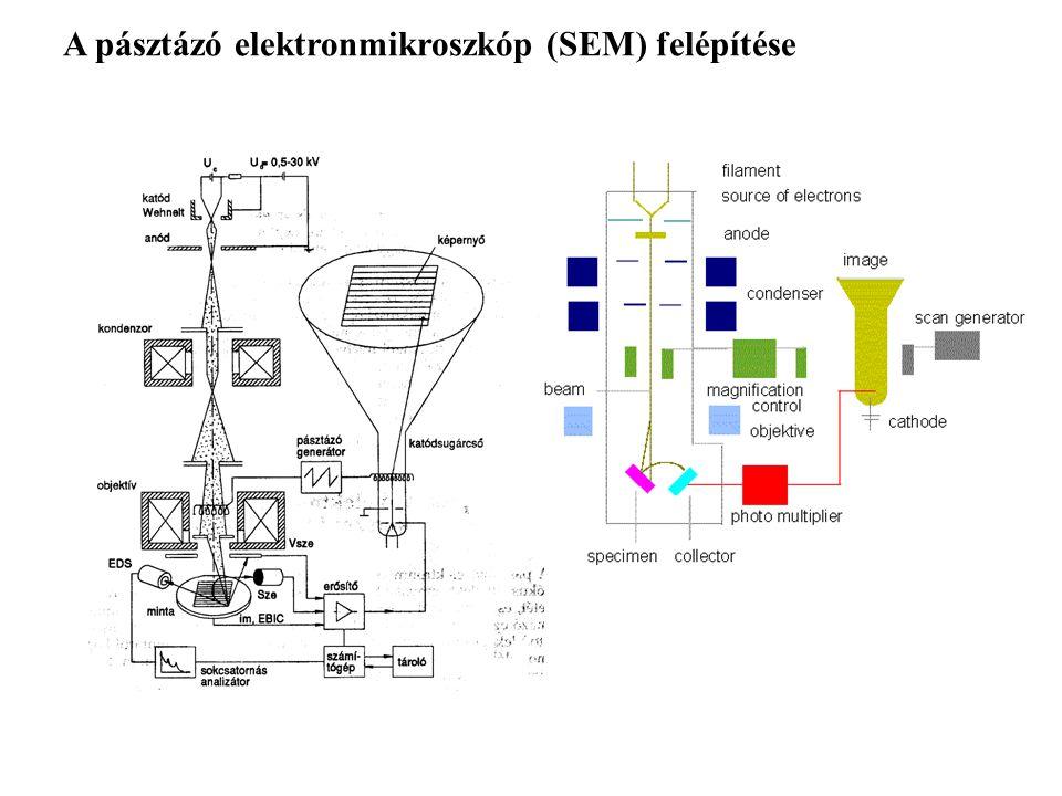 Detektorok Környezetszimuláló szekunder elektron-kép (LVSE) Szekunder elektron-kép (SEI) Visszaszórt elektron-kép (BEI) Energiadiszperzív analizátor (EDS)