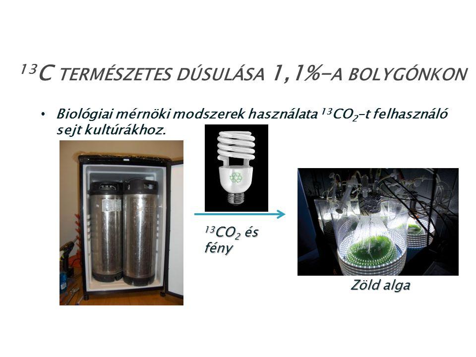 Biológiai mérnöki modszerek használata 13 CO 2 –t felhasználó sejt kultúrákhoz. 13 C TERMÉSZETES DÚSULÁSA 1,1%- A BOLYGÓNKON 13 CO 2 és fény Zöld alga