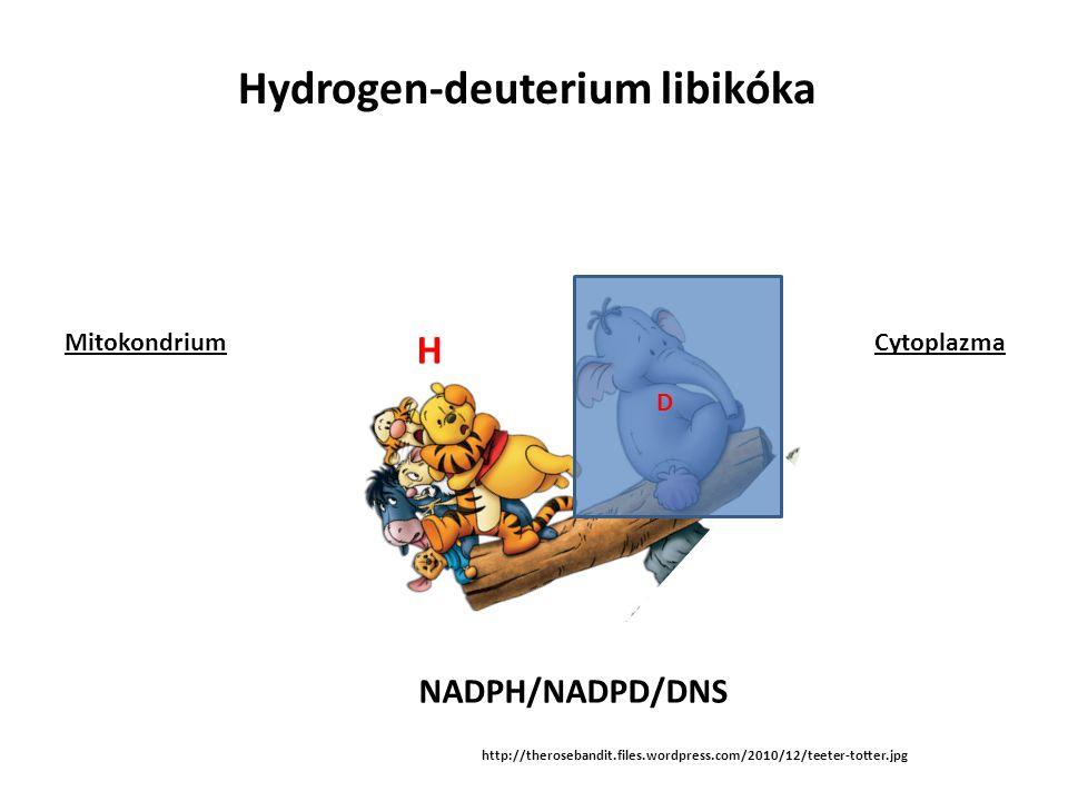 http://therosebandit.files.wordpress.com/2010/12/teeter-totter.jpg NADPH/NADPD/DNS D H Hydrogen-deuterium libikóka MitokondriumCytoplazma