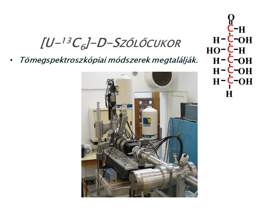 Tömegspektroszkópiai módszerek megtalálják. [U- 13 C 6 ]-D-S ZŐLŐCUKOR HO H OH C C C C C C O H H H H H H