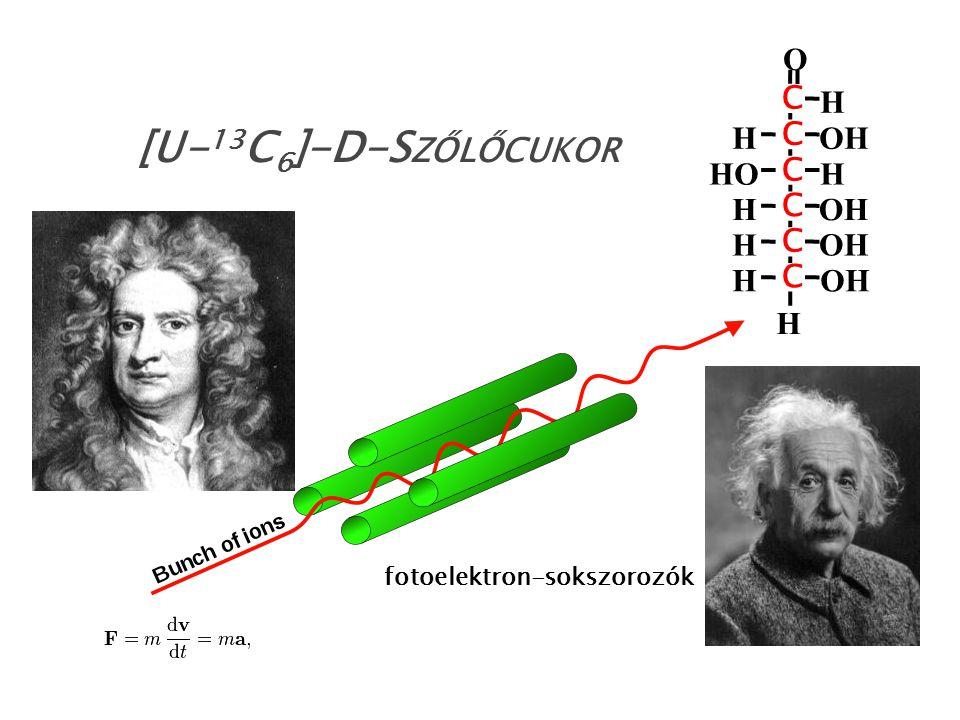 fotoelektron-sokszorozók [U- 13 C 6 ]-D-S ZŐLŐCUKOR HO H OH C C C C C C O H H H H H H