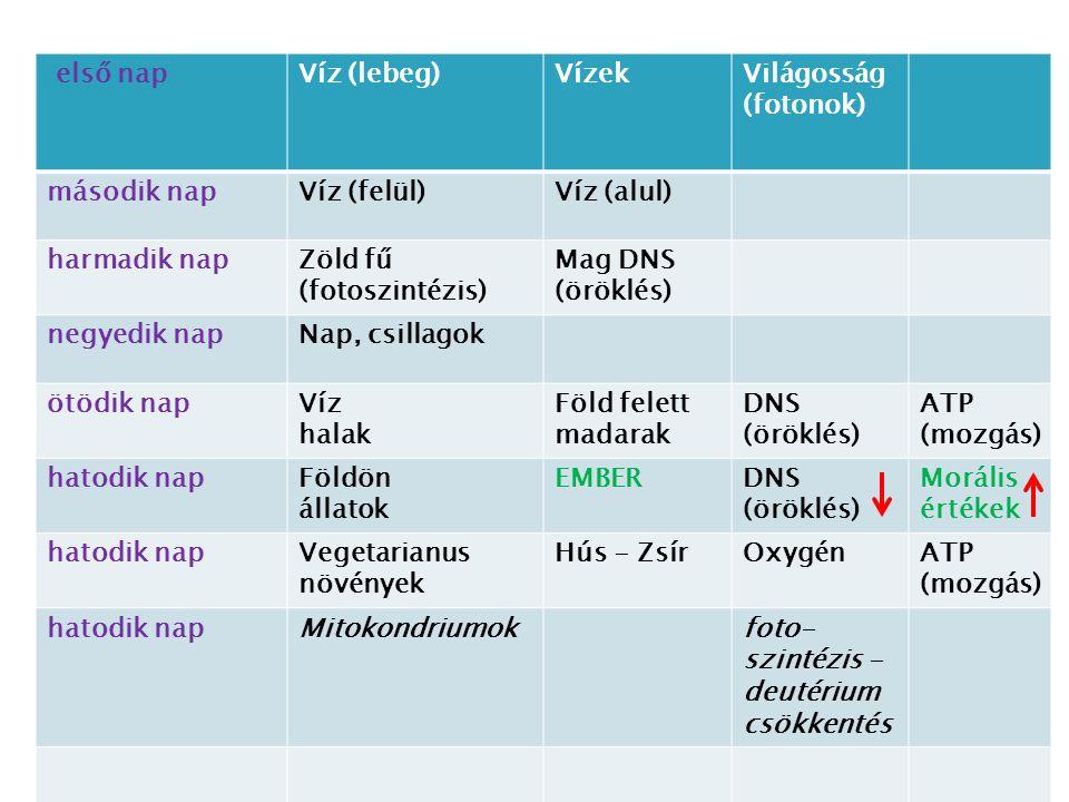első napVíz (lebeg)VízekVilágosság (fotonok) második napVíz (felül)Víz (alul) harmadik napZöld fű (fotoszintézis) Mag DNS (öröklés) negyedik napNap, c