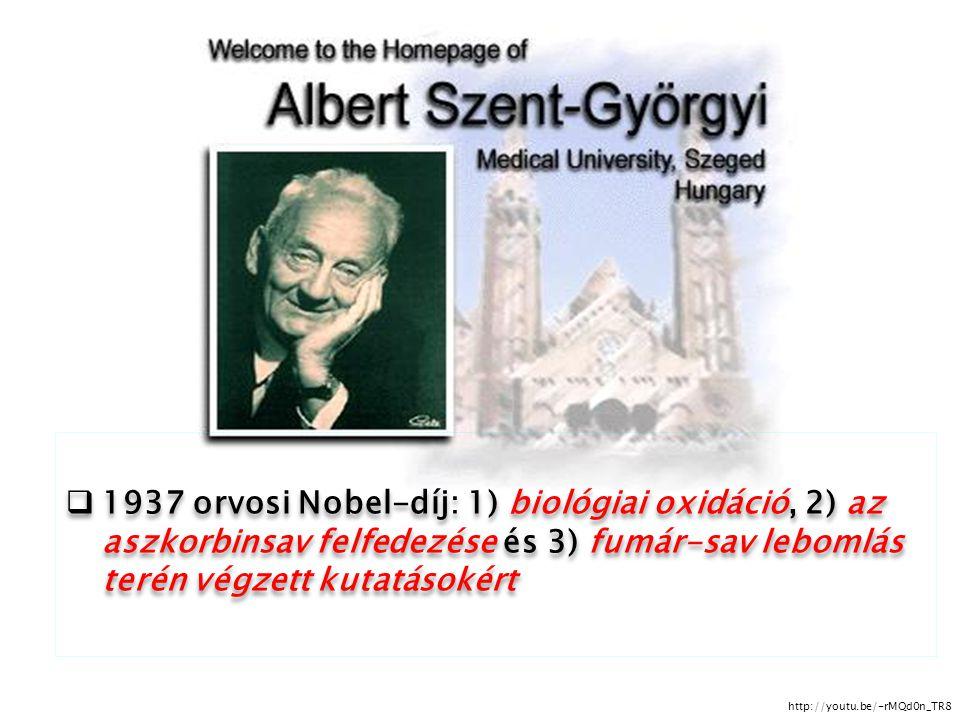  1937 orvosi Nobel-díj: 1) biológiai oxidáció, 2) az aszkorbinsav felfedezése és 3) fumár-sav lebomlás terén végzett kutatásokért http://youtu.be/-rM
