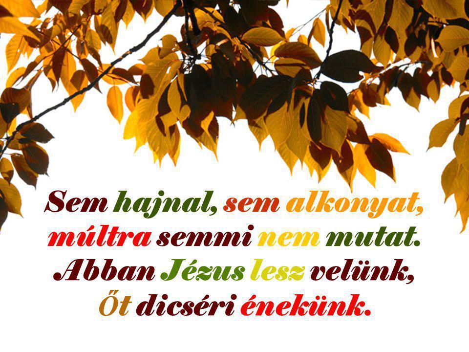 Sem hajnal, sem alkonyat, múltra semmi nem mutat. Abban Jézus lesz velünk, Ő t dicséri énekünk.