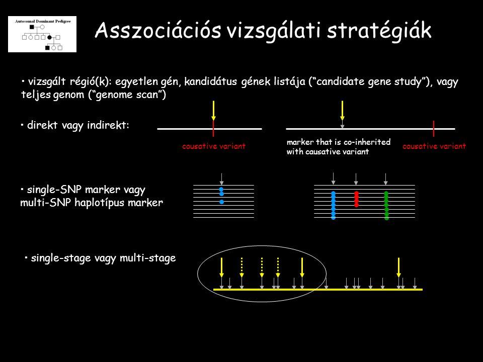 Asszociációs vizsgálati stratégiák vizsgált régió(k): egyetlen gén, kandidátus gének listája ( candidate gene study ), vagy teljes genom ( genome scan ) direkt vagy indirekt: causative variant marker that is co-inherited with causative variant single-SNP marker vagy multi-SNP haplotípus marker single-stage vagy multi-stage