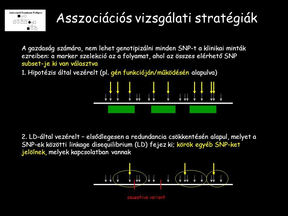 Asszociációs vizsgálati stratégiák 2.