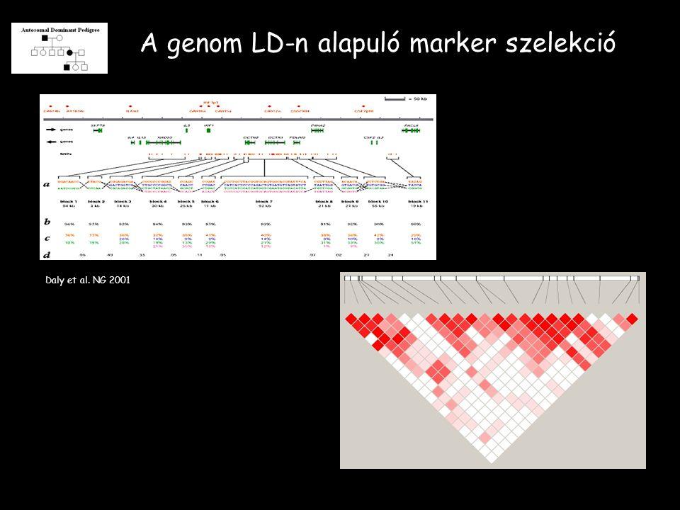 A genom LD-n alapuló marker szelekció Daly et al. NG 2001