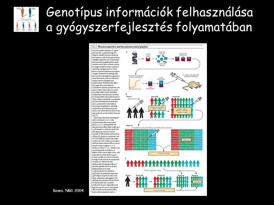 Genotípus információk felhasználása a gyógyszerfejlesztés folyamatában Roses. NRG 2004