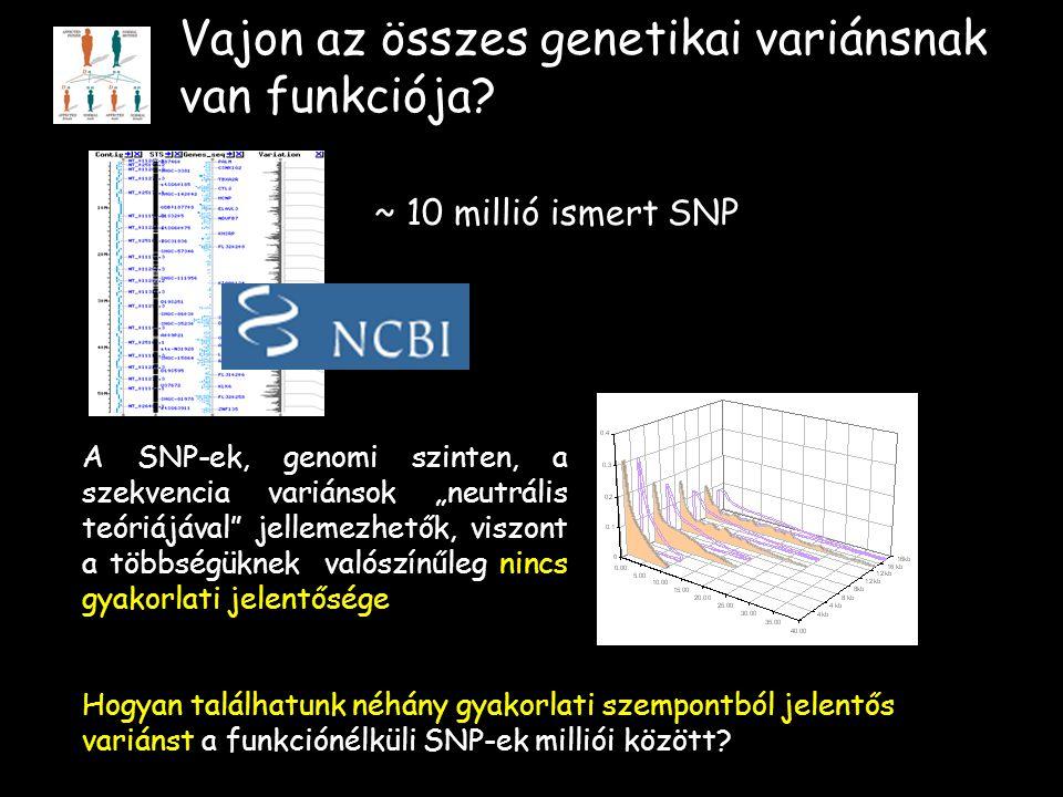 Vajon az összes genetikai variánsnak van funkciója.