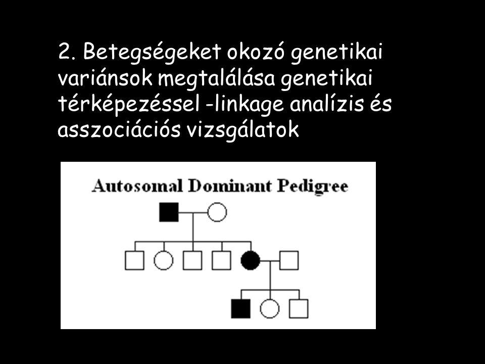 2. Betegségeket okozó genetikai variánsok megtalálása genetikai térképezéssel -linkage analízis és asszociációs vizsgálatok