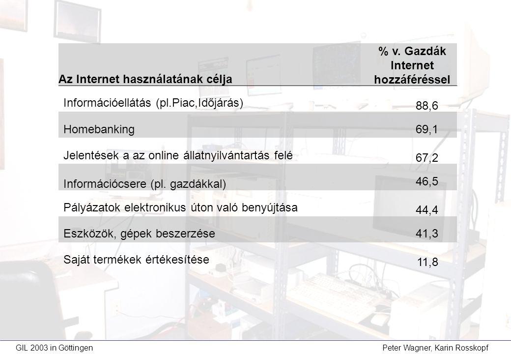 Az Internet használatának célja % v.