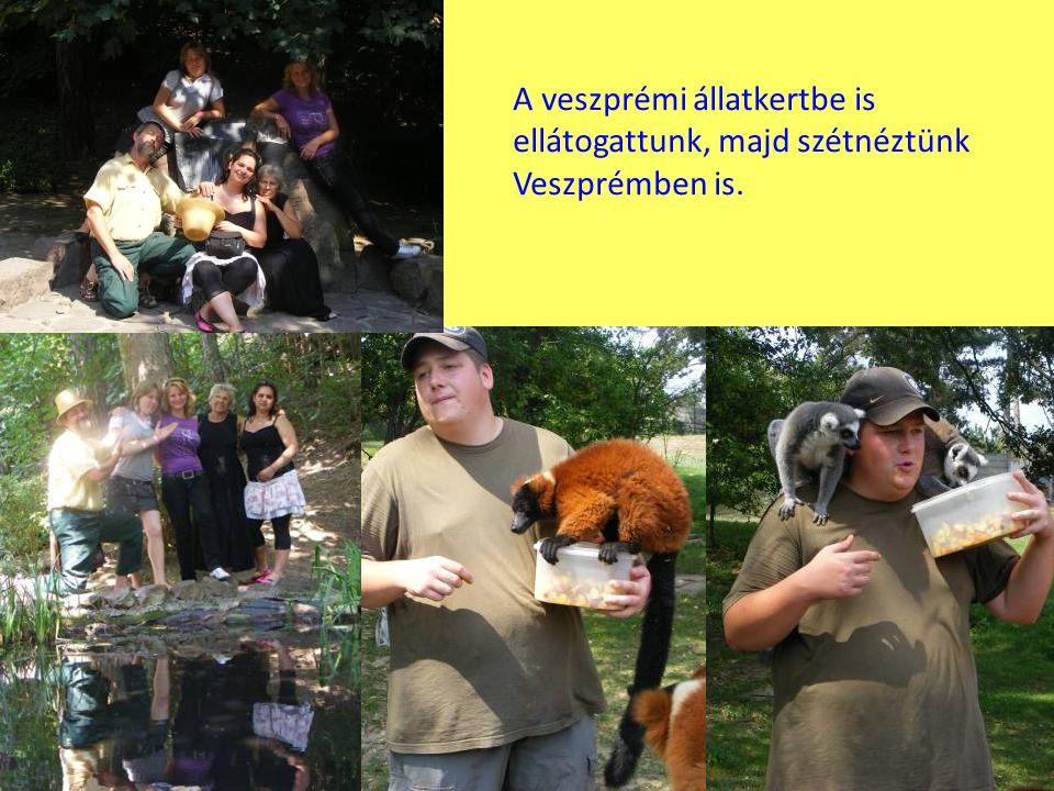 A veszprémi állatkertbe is ellátogattunk, majd szétnéztünk Veszprémben is.