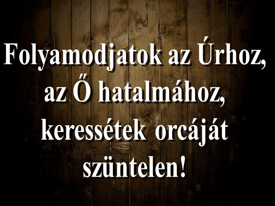 ISTEN IGÉJE MONDJA: Mert a hegyek megszűnhetnek, és a halmok meginoghatnak, de hozzád való hűségem nem szűnik meg, és békességem szövetsége nem inog meg - mondja könyörülő Urad.