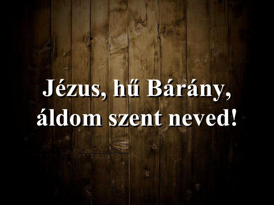 Jézus, hű Bárány, áldom szent neved!