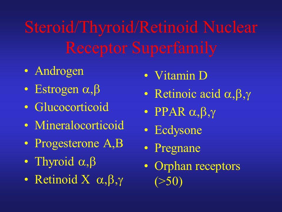 Steroid/Thyroid/Retinoid Nuclear Receptor Superfamily Androgen Estrogen ,  Glucocorticoid Mineralocorticoid Progesterone A,B Thyroid ,  Retinoid X , ,  Vitamin D Retinoic acid , ,  PPAR , ,  Ecdysone Pregnane Orphan receptors (>50)
