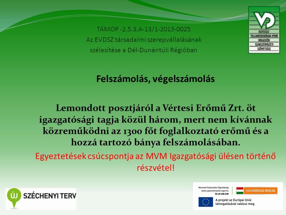 TÁMOP -2.5.3.A-13/1-2013-0025 Az EVDSZ társadalmi szerepvállalásának szélesítése a Dél-Dunántúli Régióban 8 Felszámolás, végelszámolás Lemondott posztjáról a Vértesi Erőmű Zrt.