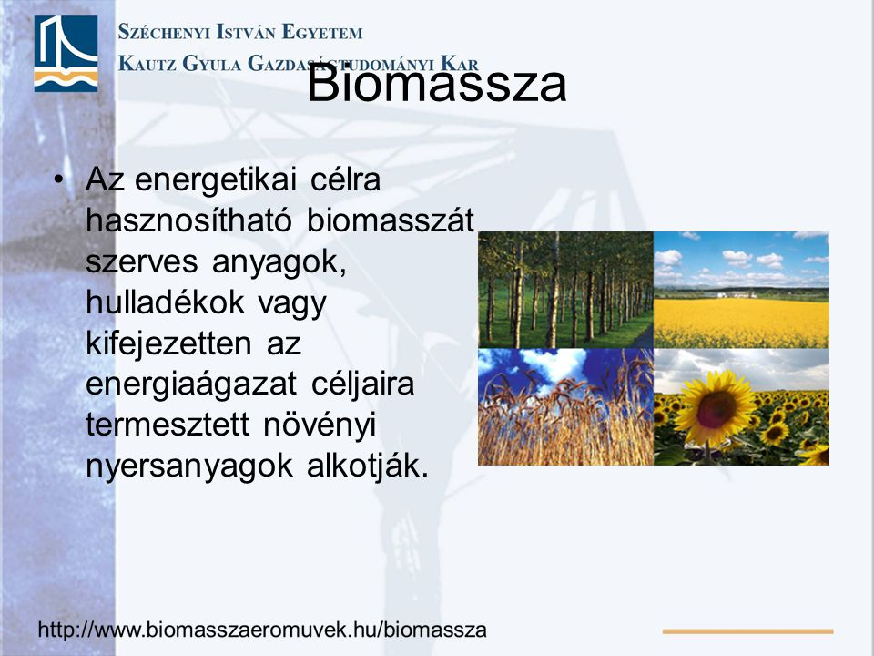 Biomassza csoportjai Növényi (szalma, kukoricaszár stb) Állati (zsírok) Vegyes (kommunális hulladék) Elsődleges: szántóföldi növények, erdő, rét, legelő,.
