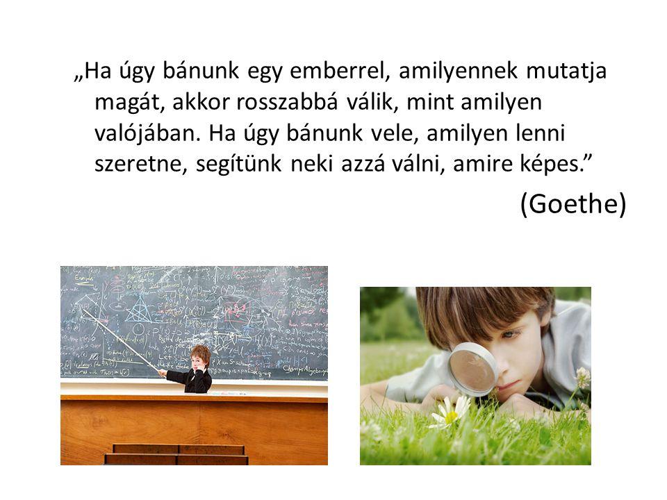 Tehetségprogramunk Kőbányai Pedagógiai Szolgáltató Központ együttműködésével hoztuk létre a 2010-2011-es tanévben(OKA).