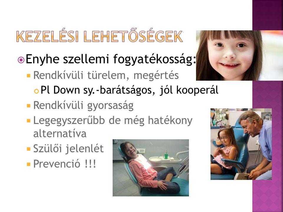  Enyhe szellemi fogyatékosság:  Rendkívüli türelem, megértés Pl Down sy.-barátságos, jól kooperál  Rendkívüli gyorsaság  Legegyszerűbb de még hatékony alternatíva  Szülői jelenlét  Prevenció !!!