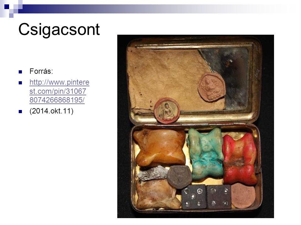 Csigacsont Forrás: http://www.pintere st.com/pin/31067 8074266868195/ http://www.pintere st.com/pin/31067 8074266868195/ (2014.okt.11)