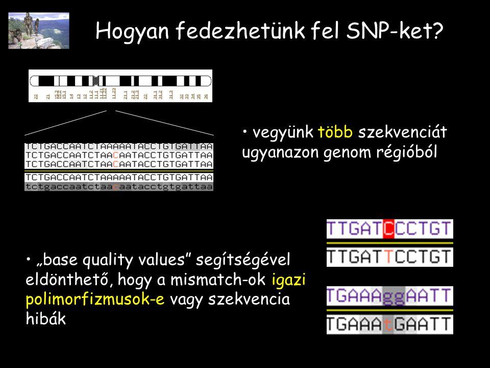 Hogyan fedezhetünk fel SNP-ket.