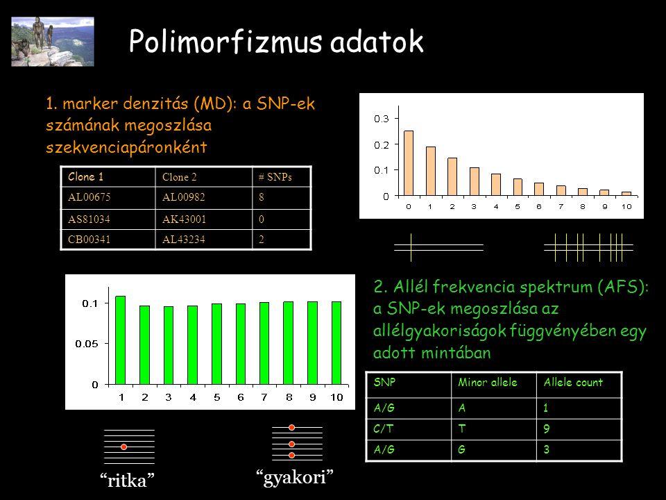 Polimorfizmus adatok 1.