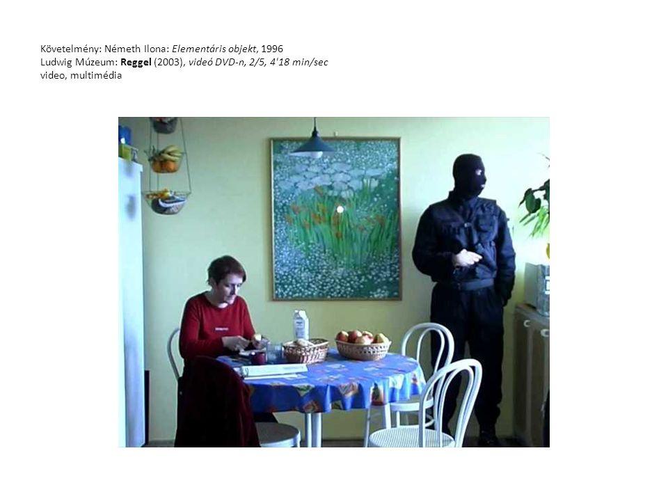 Követelmény: Németh Ilona: Elementáris objekt, 1996 Ludwig Múzeum: Reggel (2003), videó DVD-n, 2/5, 4'18 min/sec video, multimédia