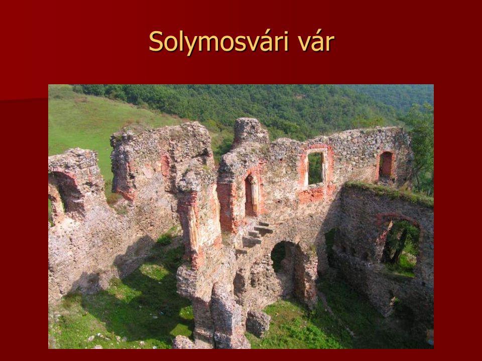 Segesvári vár Segesvári vár