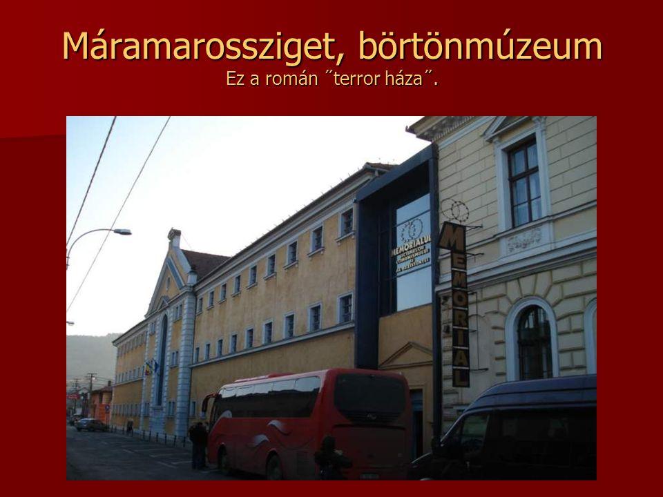Ion Creanga román meseíró szülőháza A Németvásáron található emlékház a népi építészet jegyeit hordozza. Zsindelytetős, fagerendákból építették.