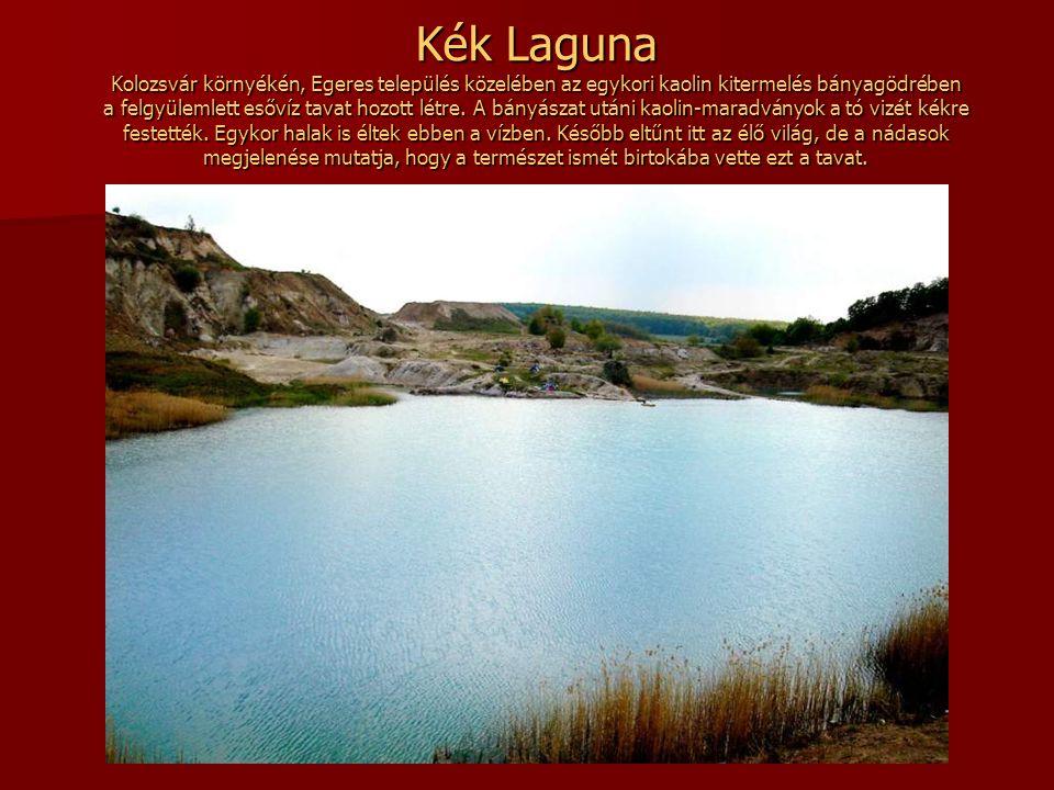 Nucsóra-tó a Retyezát hegységben