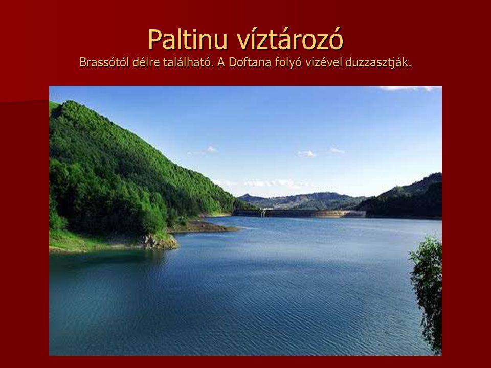 Beiului tengerszem A tó a Néra folyó Szurdokai Nemzeti Parkban található, Lugostól délre, a Duna közelében. Vándormadarak telelő helye.