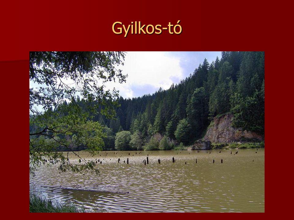 Paltinu víztározó Brassótól délre található. A Doftana folyó vizével duzzasztják.