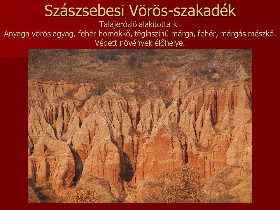 Fekete szakadék A Bánsági-hegyek észak-nyugati részén, Krassó-Szörény megyében, Mehádia falu közelében a talaj puha üledékes kőzeteit (homokkő, márga)