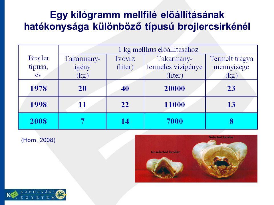 Egy kilógramm mellfilé előállításának hatékonysága különböző típusú brojlercsirkénél (Horn, 2008)