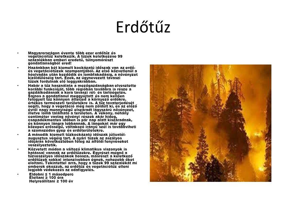 Erdőtűz Magyarországon évente több ezer erdőtűz és vegetációtűz keletkezik.