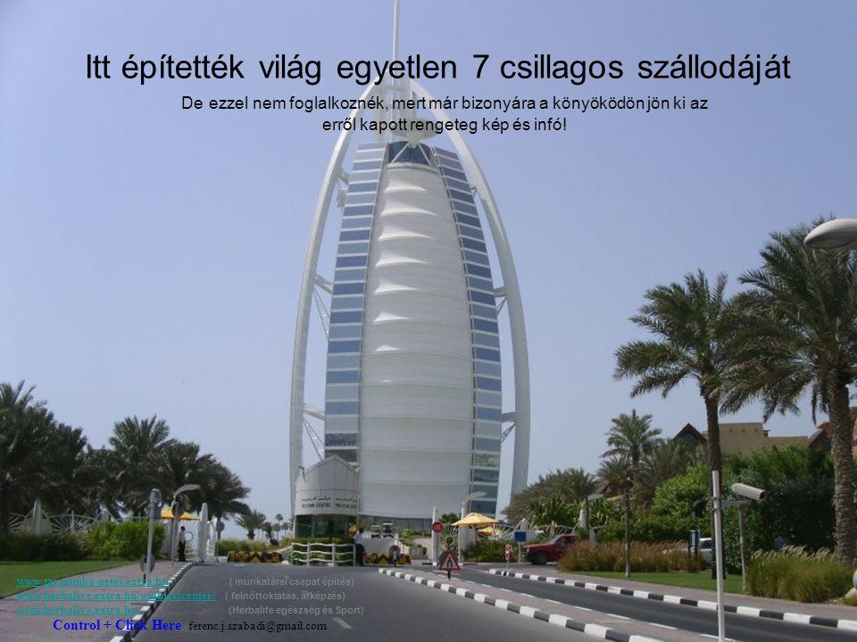 A legek városa. Eddig is kiderült, hogy Dubai törekszik mindenben a legek városa lenni.