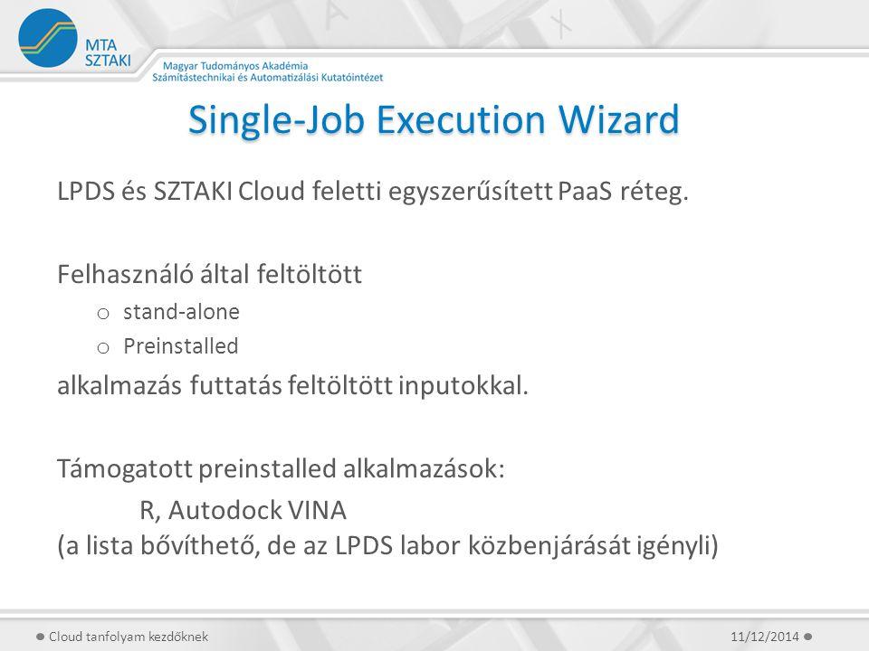 Single-Job Execution Wizard LPDS és SZTAKI Cloud feletti egyszerűsített PaaS réteg. Felhasználó által feltöltött o stand-alone o Preinstalled alkalmaz