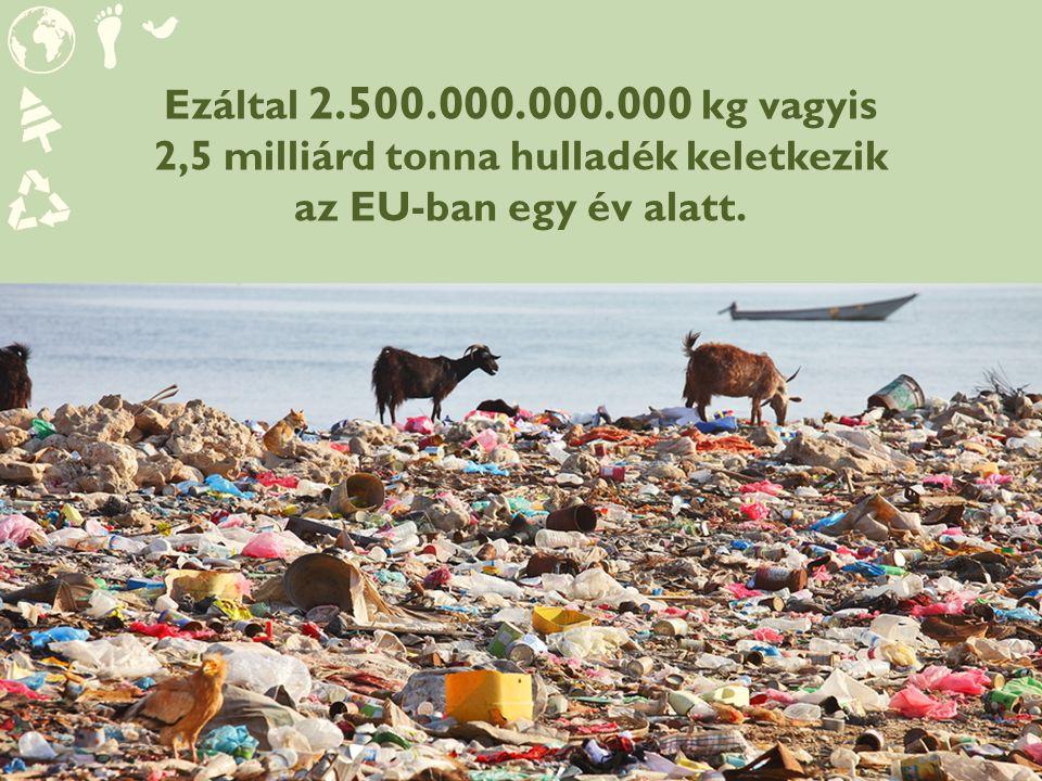 Ezáltal 2.500.000.000.000 kg vagyis 2,5 milliárd tonna hulladék keletkezik az EU-ban egy év alatt.