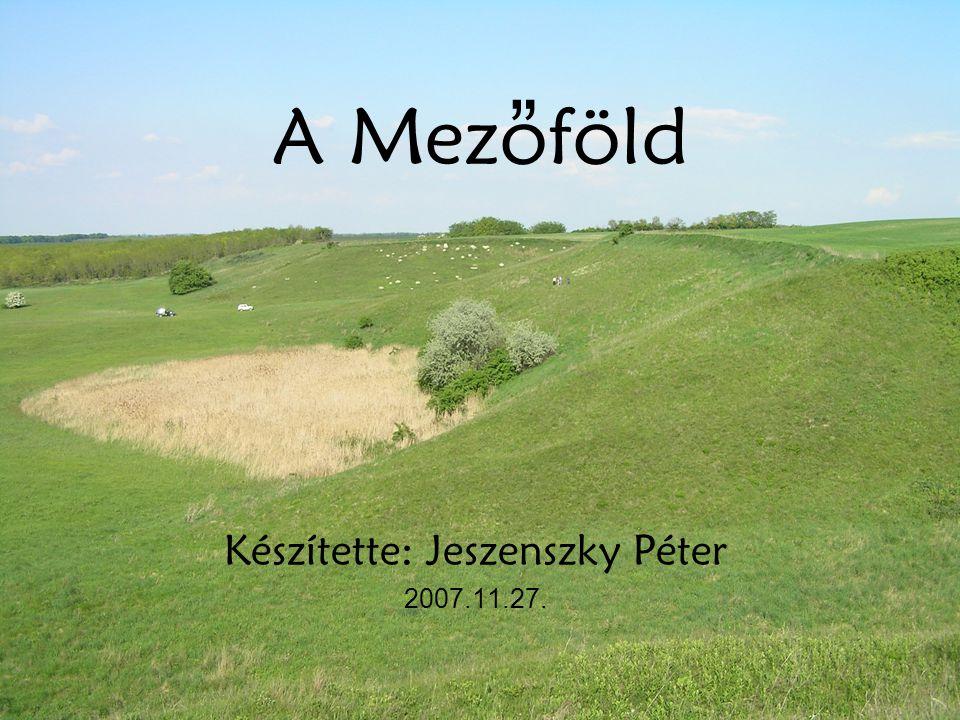 """A Mezoföld Készítette: Jeszenszky Péter 2007.11.27. """""""