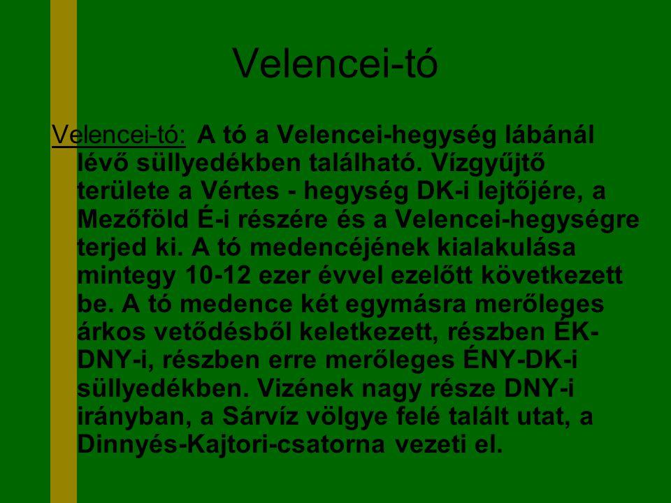 Velencei-tó Velencei-tó: A tó a Velencei-hegység lábánál lévő süllyedékben található. Vízgyűjtő területe a Vértes - hegység DK-i lejtőjére, a Mezőföld