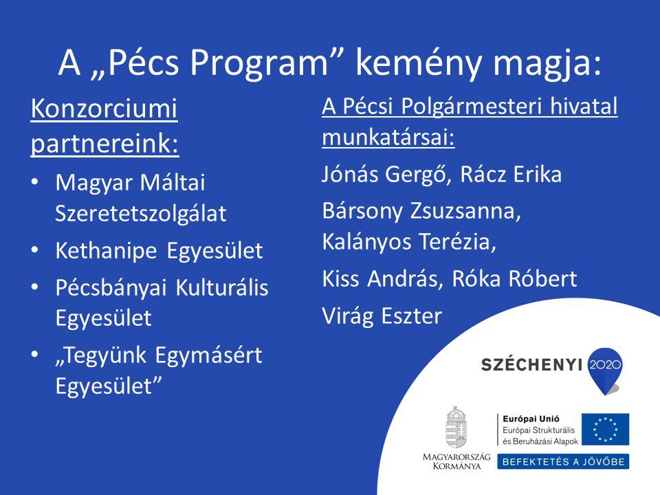"""A """"Pécs Program"""" kemény magja: Konzorciumi partnereink: Magyar Máltai Szeretetszolgálat Kethanipe Egyesület Pécsbányai Kulturális Egyesület """"Tegyünk E"""