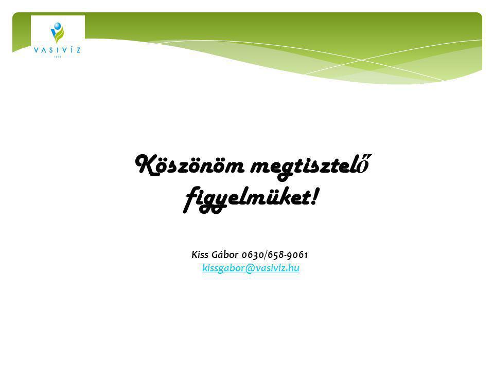Köszönöm megtisztel ő figyelmüket! Kiss Gábor 0630/658-9061 kissgabor@vasiviz.hu