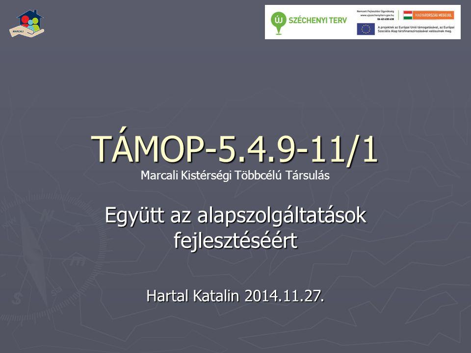 TÁMOP-5.4.9-11/1 Együtt az alapszolgáltatások fejlesztéséért Hartal Katalin 2014.11.27.