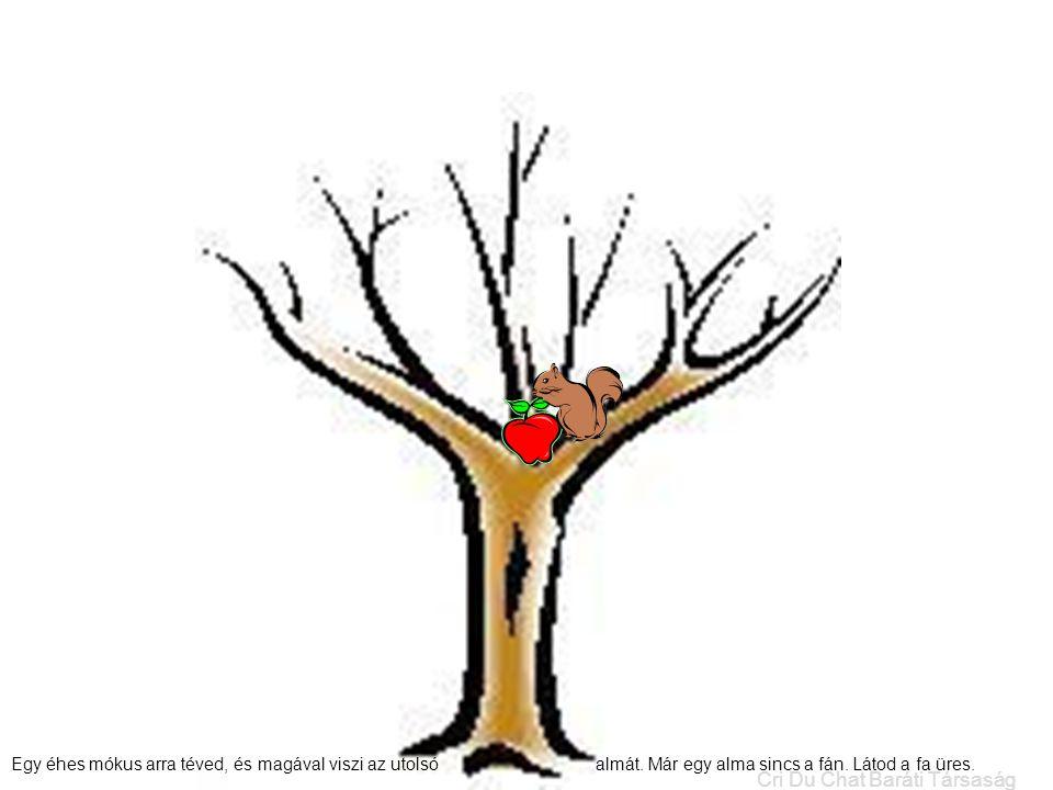 Egy éhes mókus arra téved, és magával viszi az utolsó almát. Már egy alma sincs a fán. Látod a fa üres. Cri Du Chat Baráti Társaság