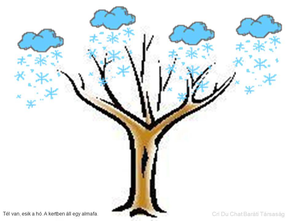 Tél van, esik a hó. A kertben áll egy almafa. Cri Du Chat Baráti Társaság