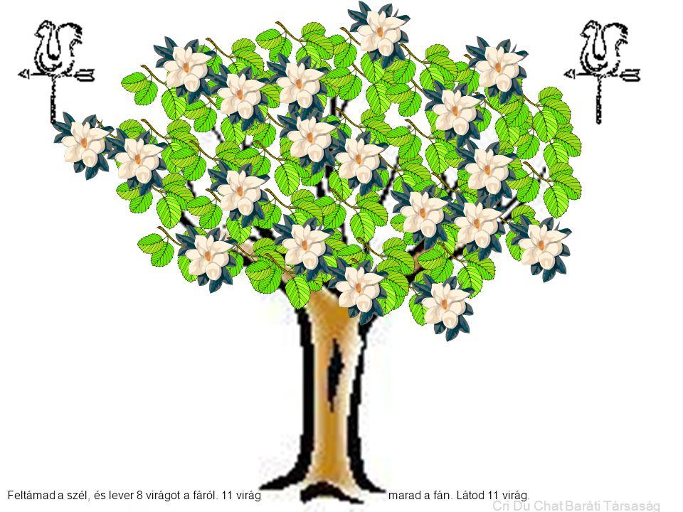 Feltámad a szél, és lever 8 virágot a fáról. 11 virág marad a fán. Látod 11 virág. Cri Du Chat Baráti Társaság