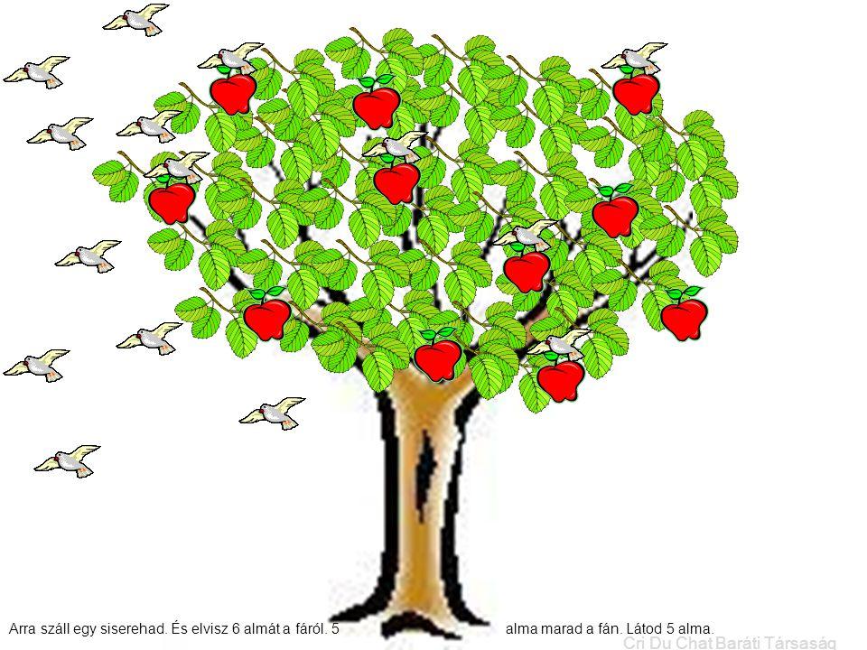 Arra száll egy siserehad. És elvisz 6 almát a fáról. 5 alma marad a fán. Látod 5 alma. Cri Du Chat Baráti Társaság