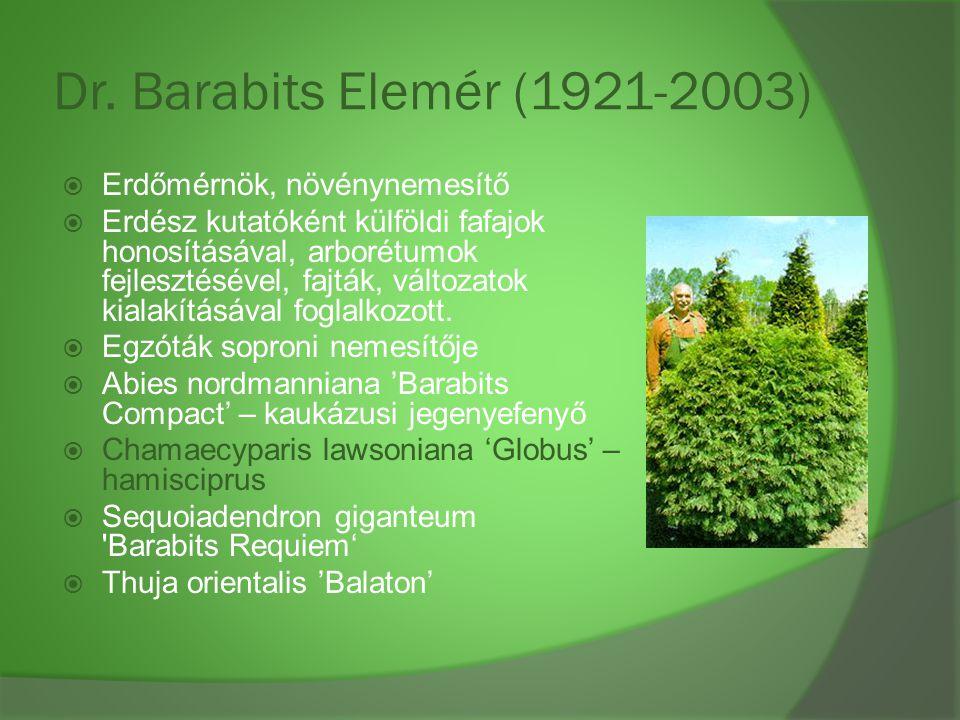 Dr. Barabits Elemér (1921-2003)  Erdőmérnök, növénynemesítő  Erdész kutatóként külföldi fafajok honosításával, arborétumok fejlesztésével, fajták, v