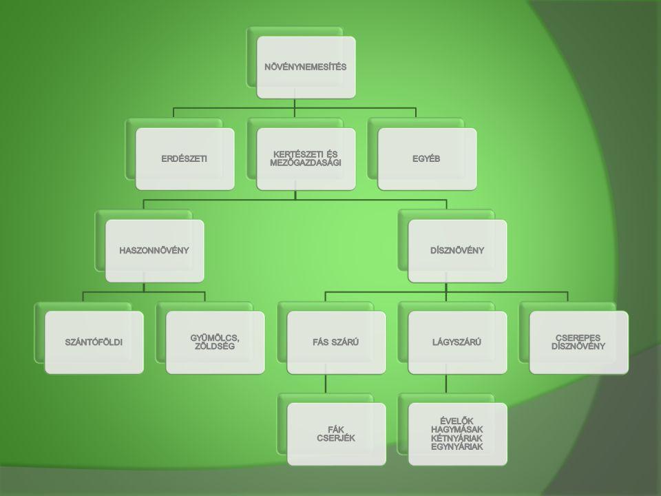 Növénynemesítés fogalma  A nemesítés, az egymástól genetikailag különböző változatok vagy formák, kiválogatását jelenti.